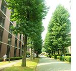 神奈川県にある大学